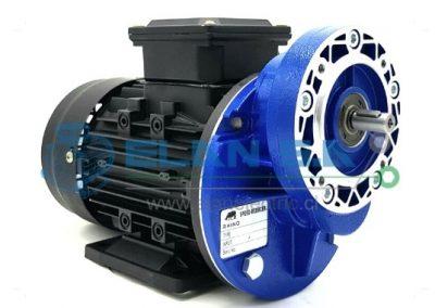 Motor RHINO IE2 + Pre Reductor